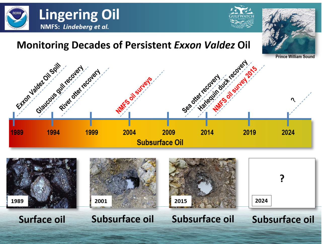 Lindgering Oil in Prince Williams Sound Graphic