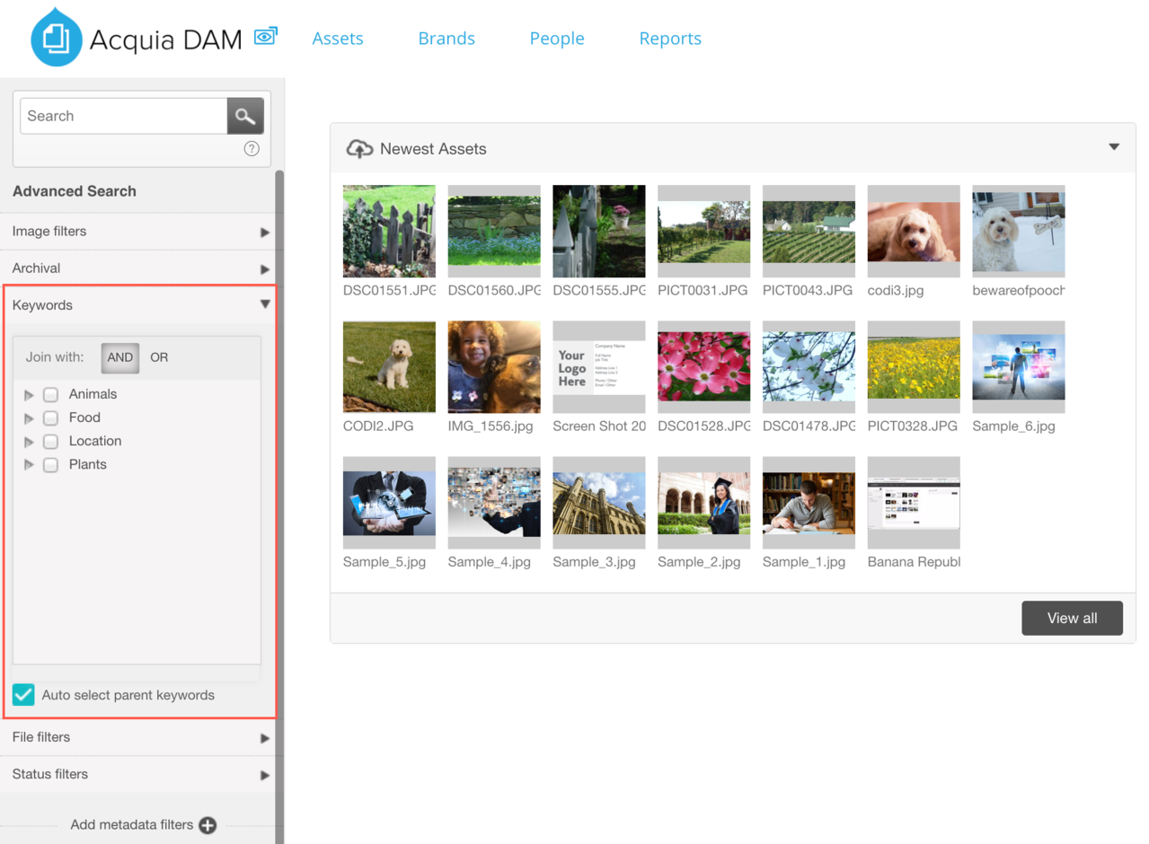 Dam_keywords