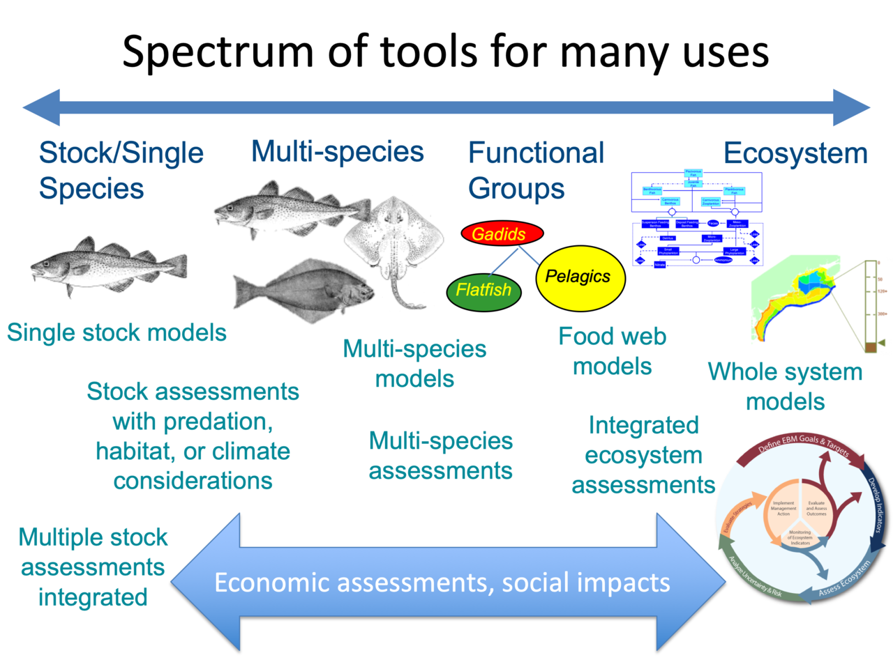 Figure shows spectrum of models increasing in complexity from single species through multispecies, food web, and end to end. Uses for each type of model from generating annual species harvest advice to integrated ecosystem assessment are aligned with model types. Social and economic analyses can be incorporated into each analysis.