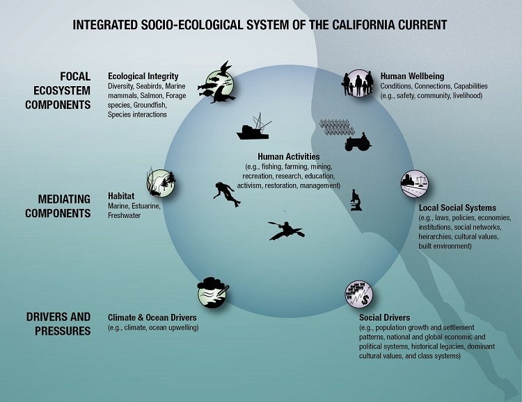 Conceptual model of the California Current social–ecological system.