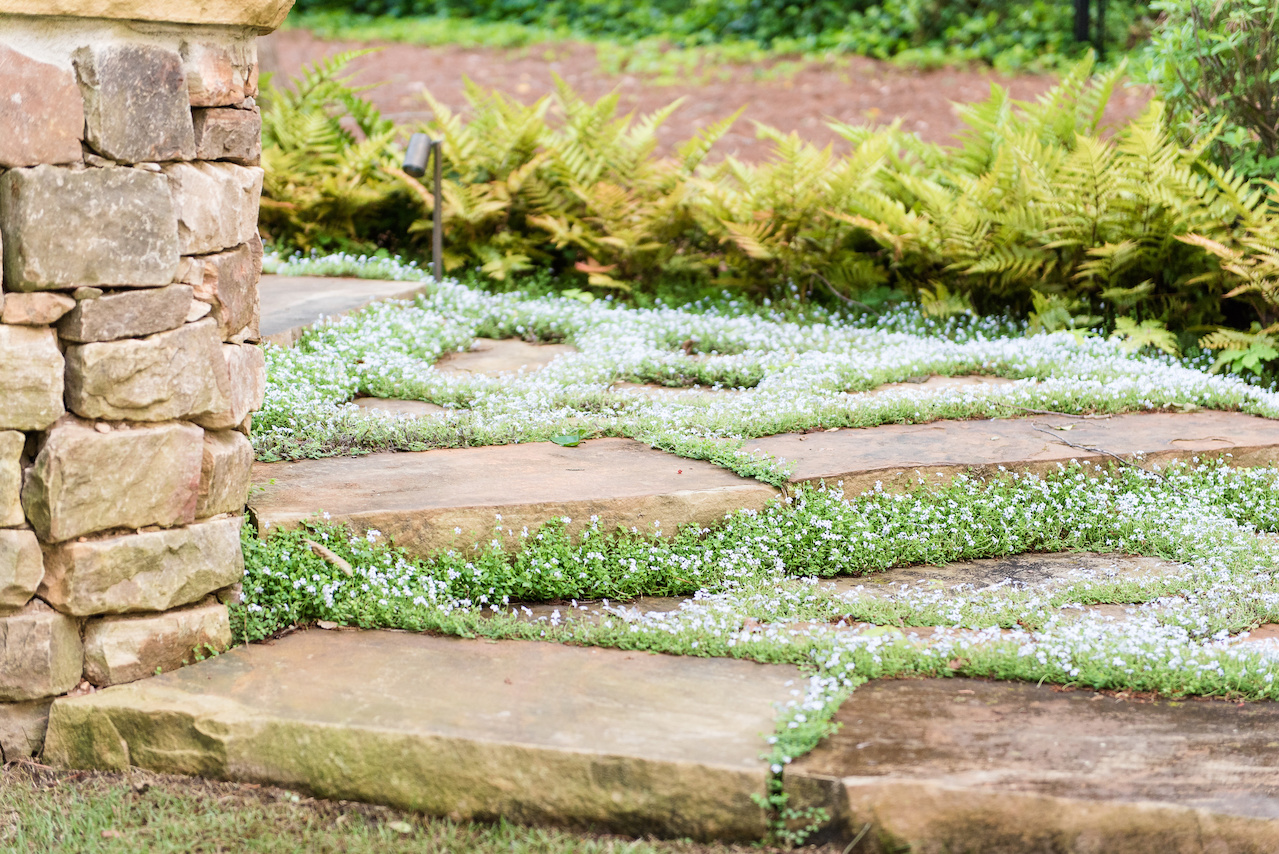 """""""As you get further from the house, irregular shaped stones are surrounded in creeping ground covers for seasonal interest,"""" says John."""