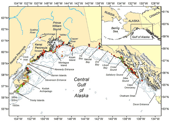 Cartographic Features of Central Gulf of Alaska