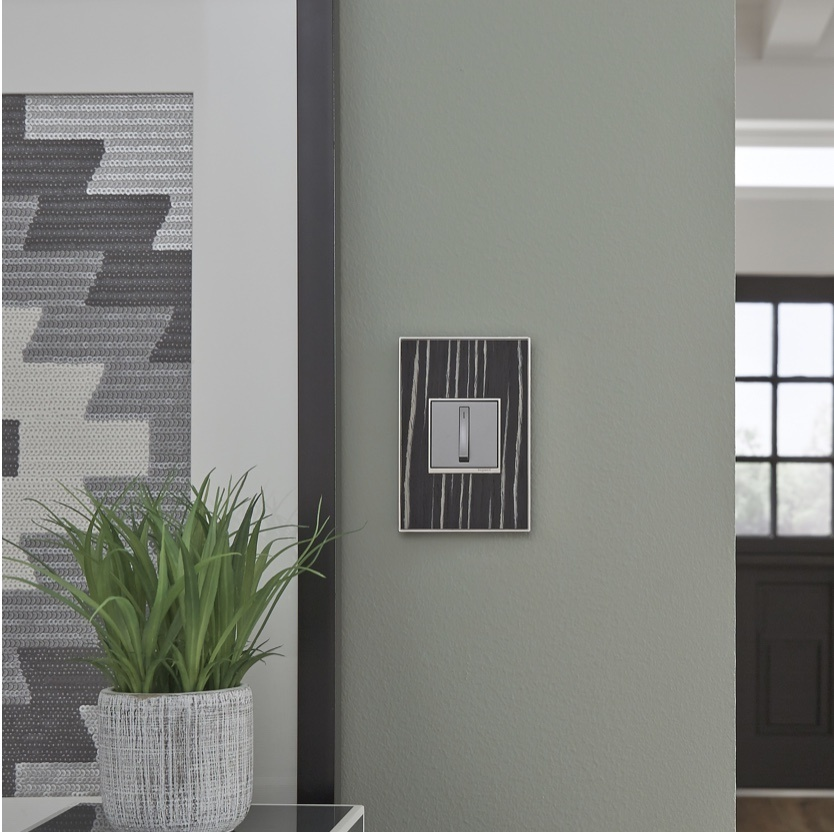 square white light switch with brown textured wall plate on pale green wall next to gray geometric paining and green plant
