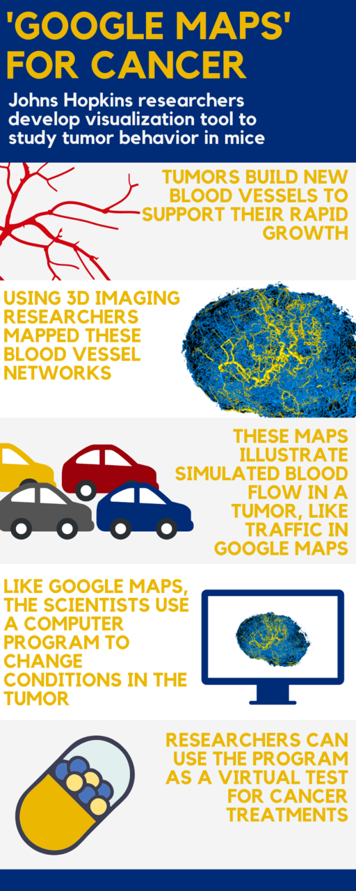 Develop Google Maps on