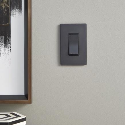 Graphite light switch with screwless wallplate installed next to modern artwork