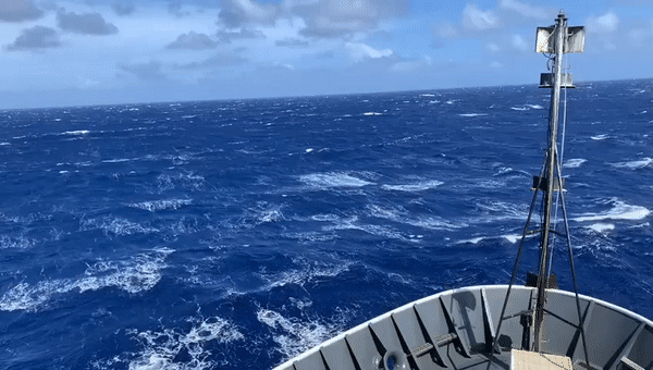 "Strong winter winds can make for challenging survey conditions. This day was particularly rough, with sustained winds over 30 kt. In conditions like this, the mammal observers go on ""weather watch,"" where a single observer watches to see if conditions improve. Video: NOAA Fisheries/Allan Ligon."