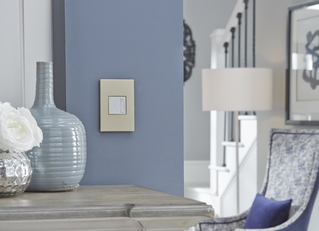white adorne switch and gold wall plate against powder blue wall in hallways