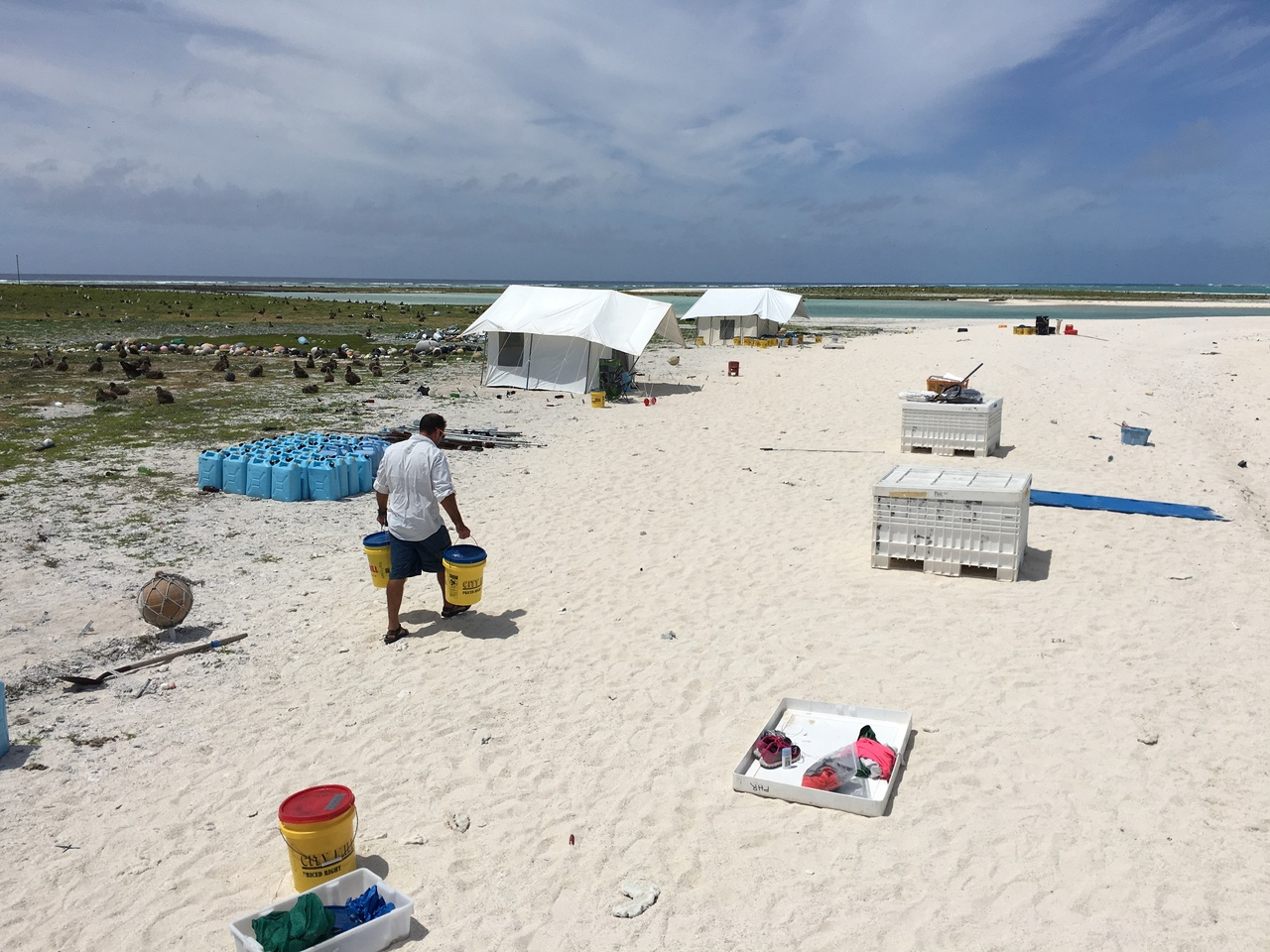 Field scientists bringing gear to set-up field camps on Laysan Island.