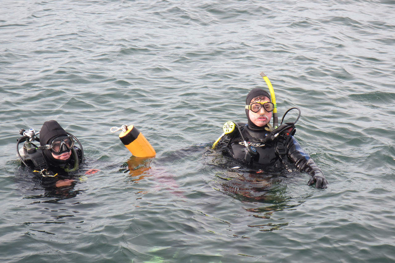 Scuba divers at water surface