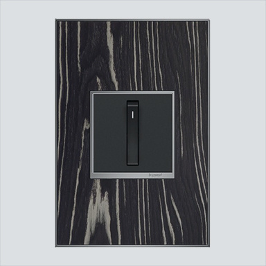 Black light switch and wall plate