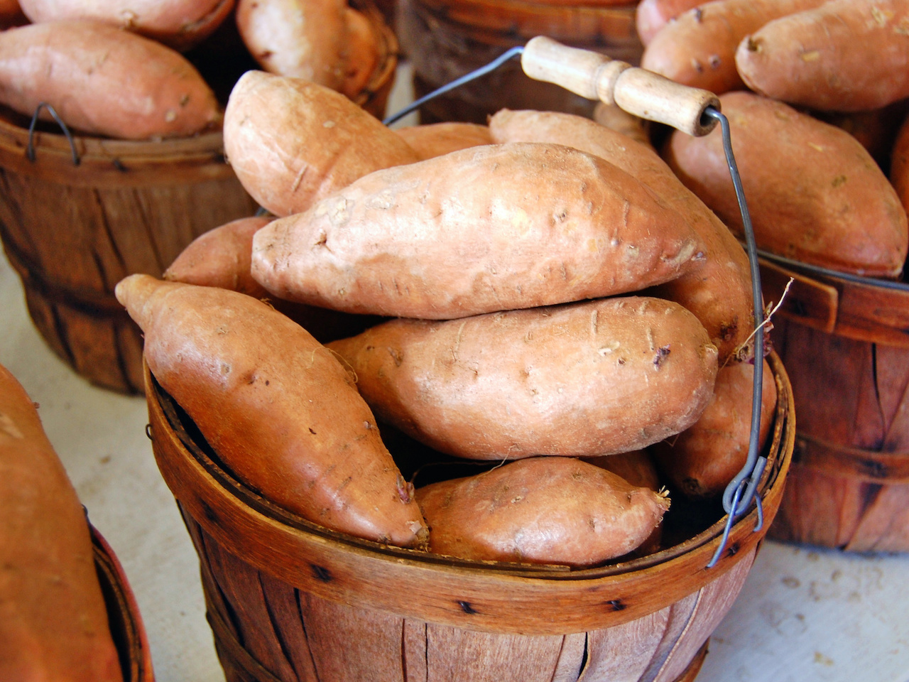 A cute little barrel of sweet potatoes at the Alabama Farmers Market