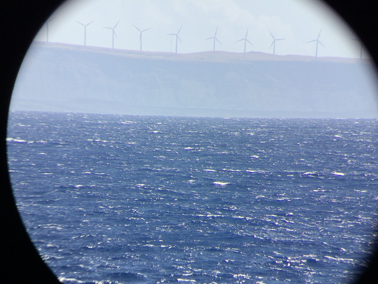 Pakani Nui Wind Farm seen from offshore near South Point on Hawai'i Island. Clean energy is an increasingly important way that our island communities generate power. One of our main funders for this WHICEAS cruise is the Bureau of Ocean Energy Management (BOEM), and they are very interested in developing projects for renewable energy. Photo: NOAA Fisheries/Suzanne Yin.