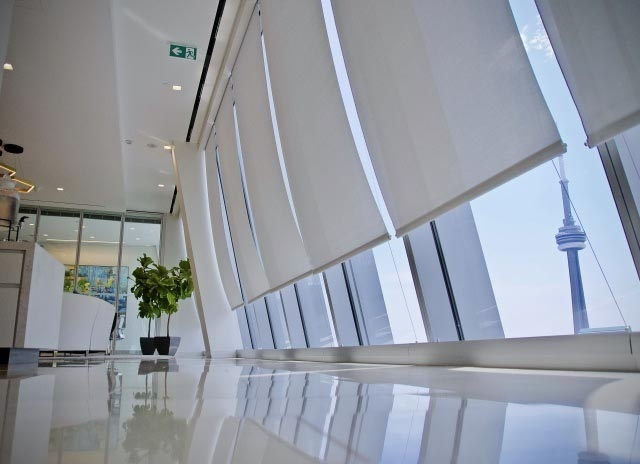 Several white Solarfective shades in front of large office windows