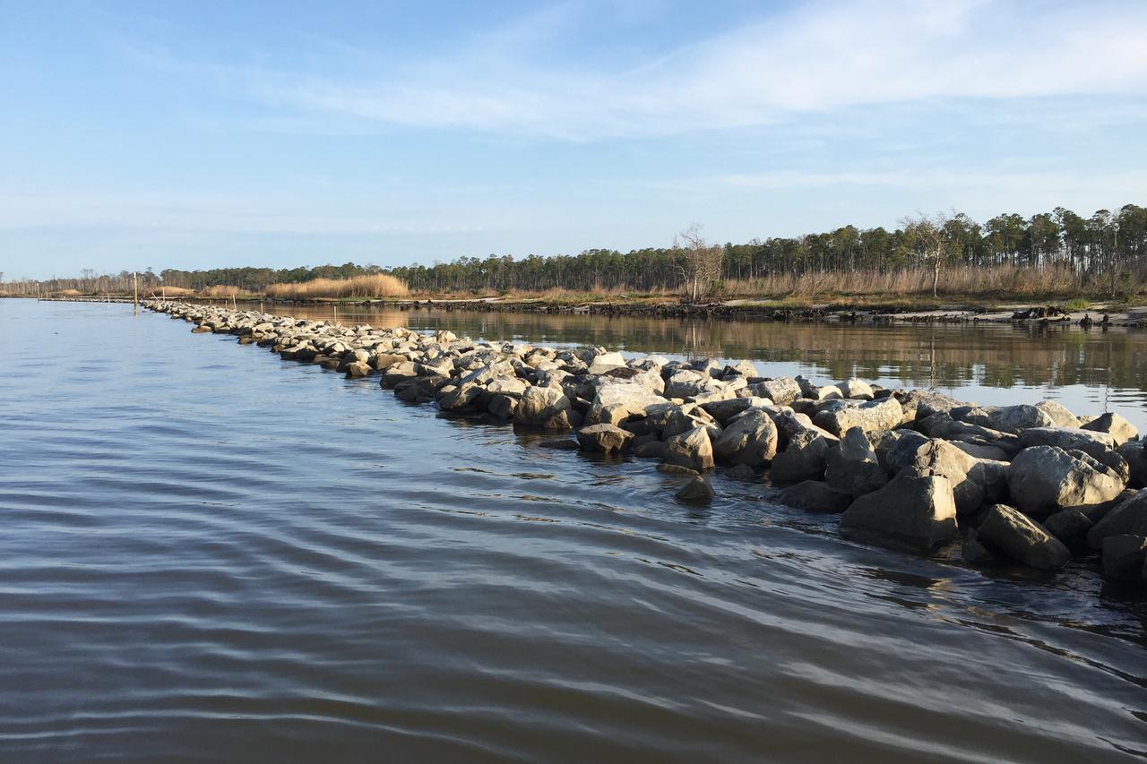 A rocky breakwater near the shore of a marsh.
