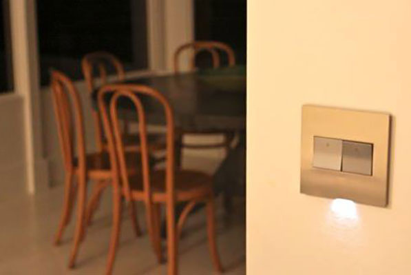 adorne brass wall plate with magnesium paddle switches and nightlight