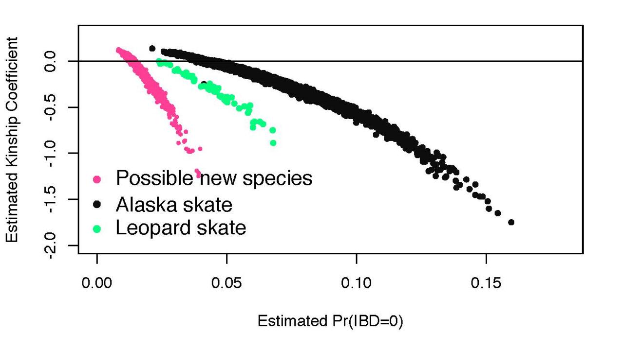 SkatesGeneticStructure_embryo-comparison.png