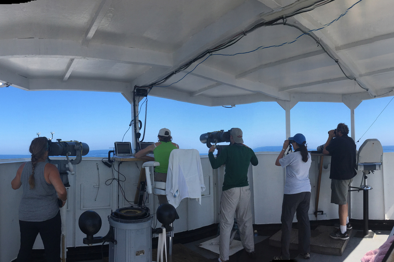 group of 5 observers each looking through binoculars out to sea from a covered deck on a ship