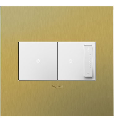 adorne 2-Gang Brushed Brass Wall Plate