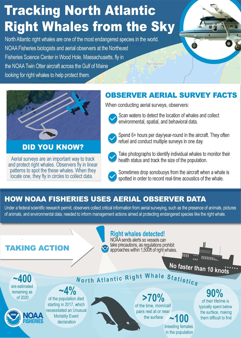 Aerial Survey Infographic_Web Story_FINAL DRAFT, v3.4 (1).jpg