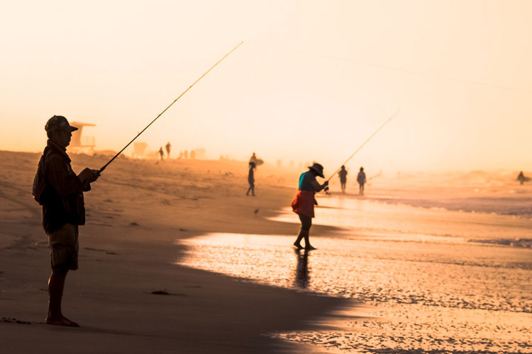 Recreational anglers fish from shore.