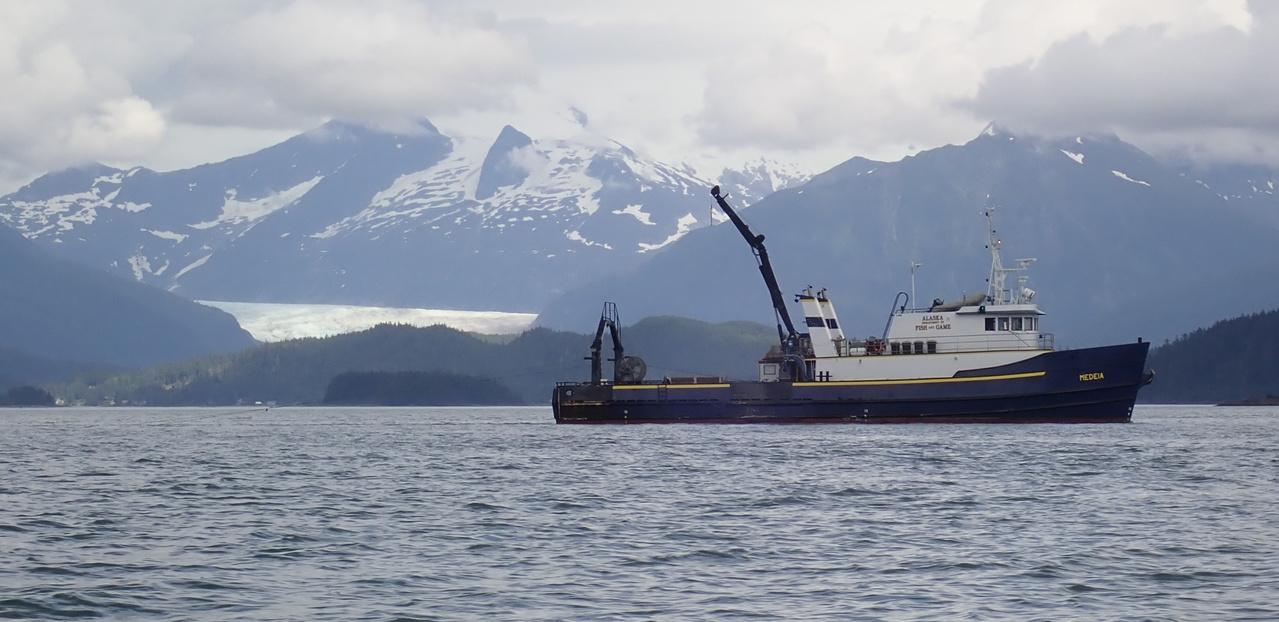 ADF&G_resrch-vessel_Medeia_Auke-Bay_Mendenhall_Glacier_by_Jim_Potdevin.jpg