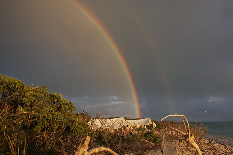 Rainbow over camp at Lisianski Island.