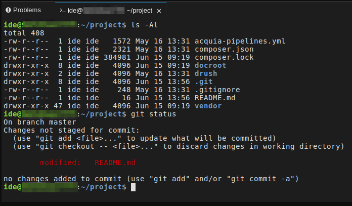 Screenshot showing terminal output in the Cloud IDE