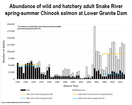 graph shows overall number of wild plus hatchery spring-summer Chinook salmon increases between 1962 and 2014