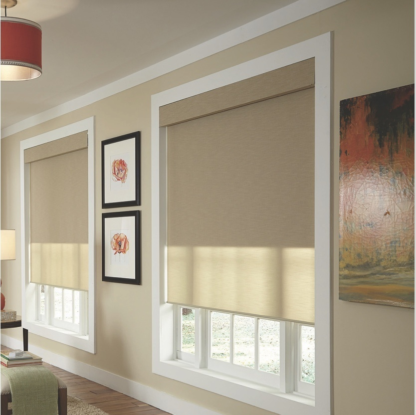 Qmotion Automated or Manual Shades on a window within a residential home