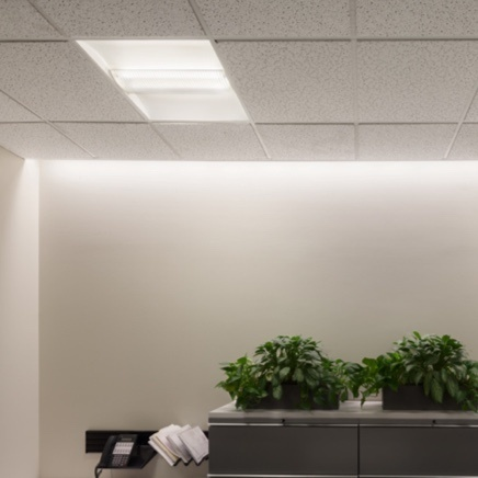 Perimeter Lighting around ceiling in office with file cabinets and plants