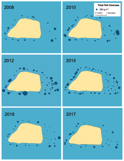 Fish biomass at survey sites each year from 2008 to 2017.