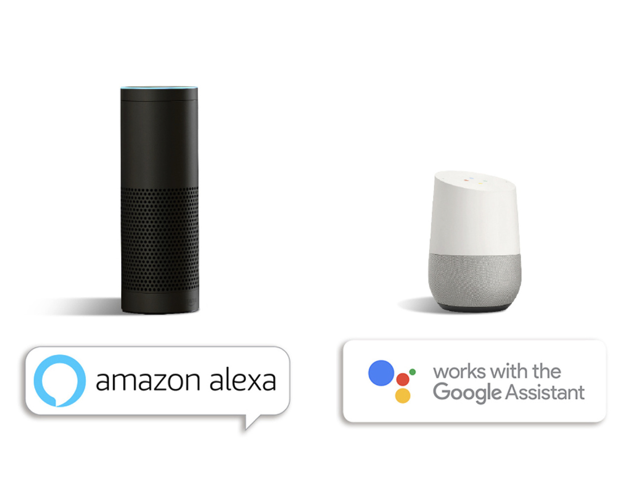 Amazon Alexa and Google Assistant on white background with product names below