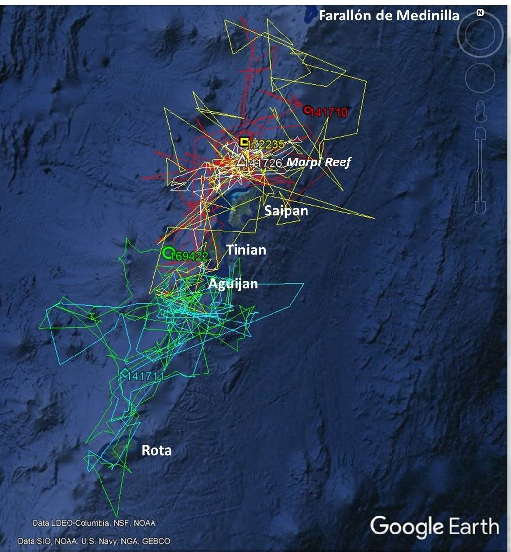 Map of the Northern Mariana Islands from Rota to Farallon de Medinilla with satellite tracks from tagged short-finned pilot whales.