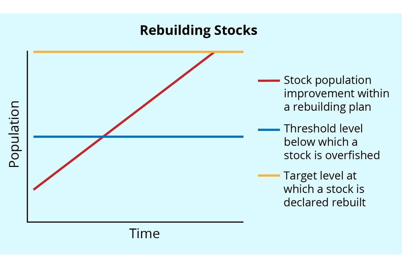 Rebuilding stocks - graph depicts population growth over time.