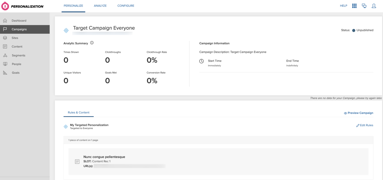 Analytics summary for targeted campaigns