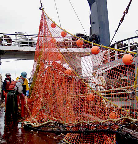 "Modified ""FlatFish"" Trawl Gear.jpg"