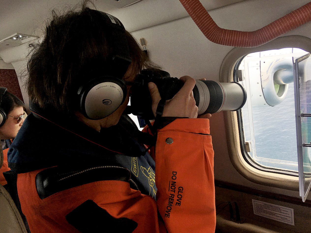 Observers photograph sightings to gather images for identification of individual whales and mark- recapture analysis, which can be used in abundance estimates and life history studies.