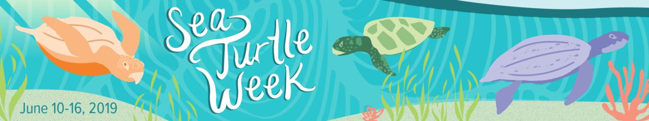 NOAA Fisheries Sea Turtle Week 2019 Banner