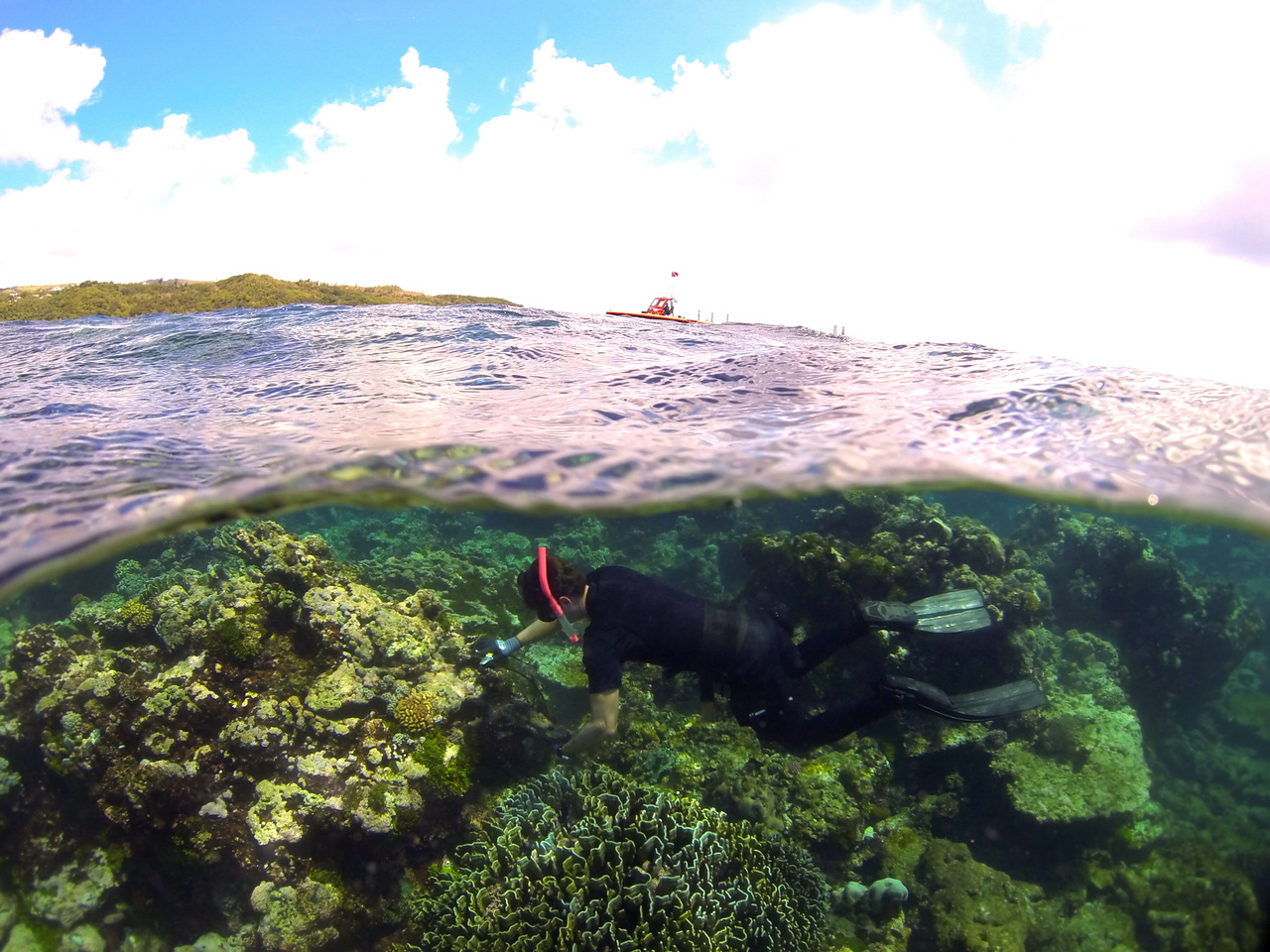 Chief Scientist Dr. Tom Oliver carefully replaces a subsurface temperature recorder on the coral reef along the coast of Guam