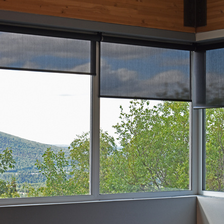 residential shades on living room windows