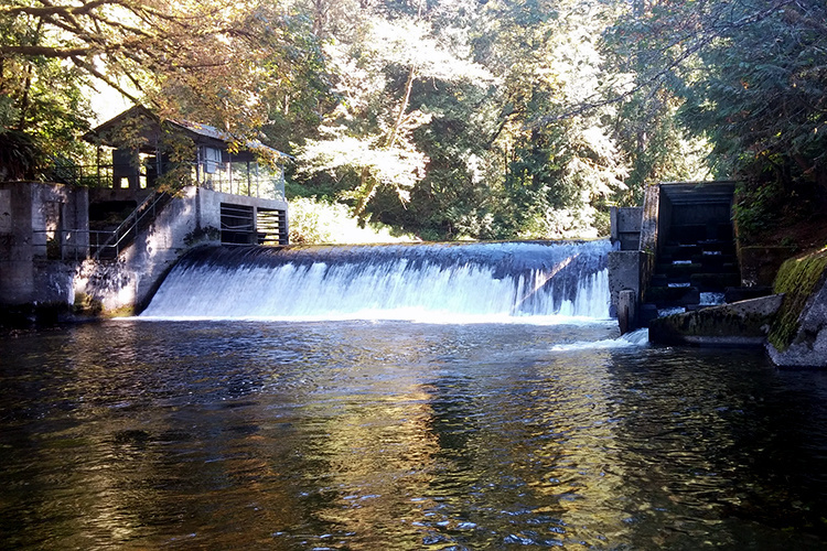Diversion dam in the Pilchuck River