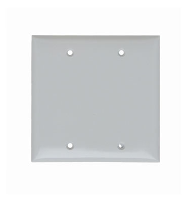 Blank Plates -- Box Mounted, Two Gang, White - SP23W