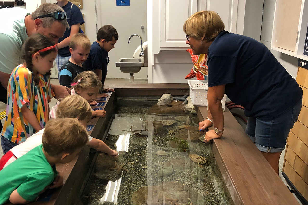 children at touch tank