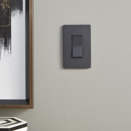 Graphite paddle switch with screwless wall plate