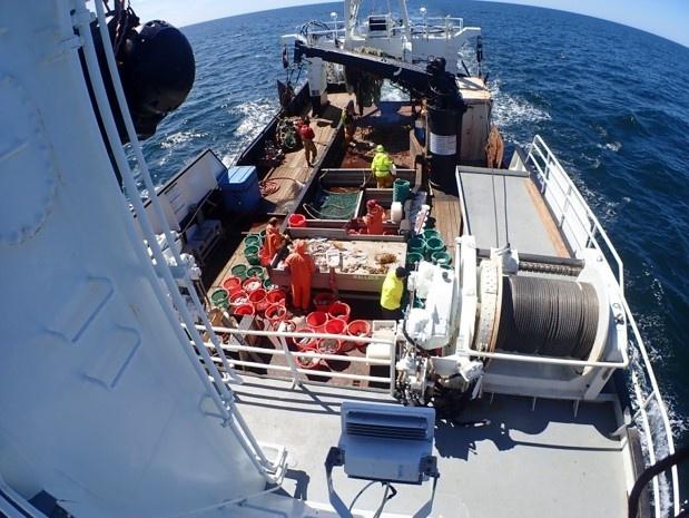 Research Vessel Deck