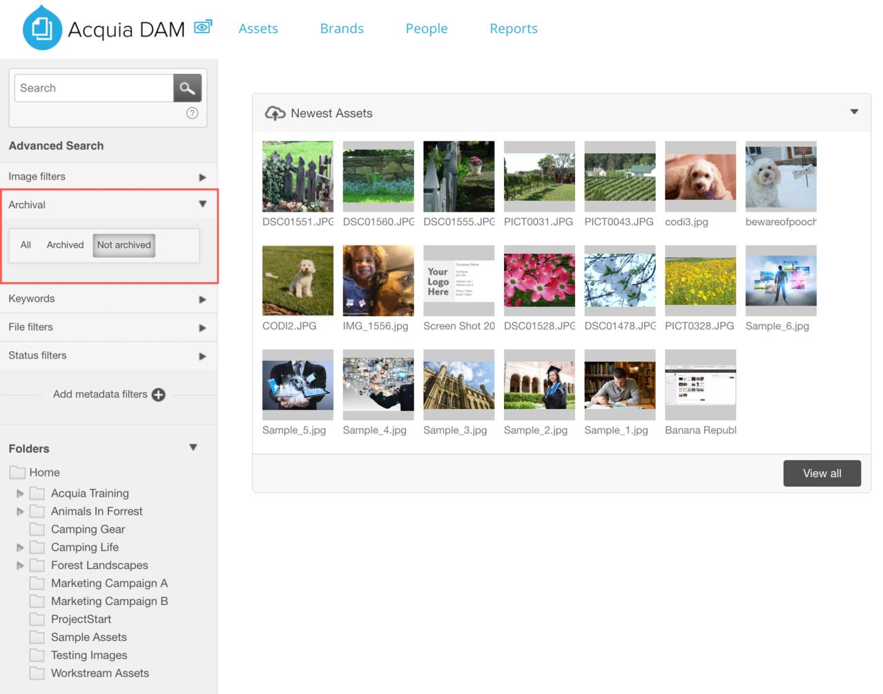 Dam_Archival