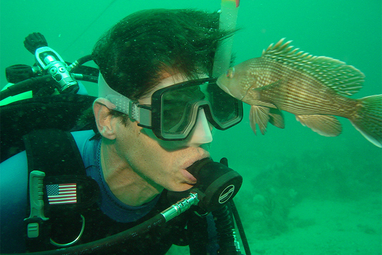 Researcher underwater with black sea bass