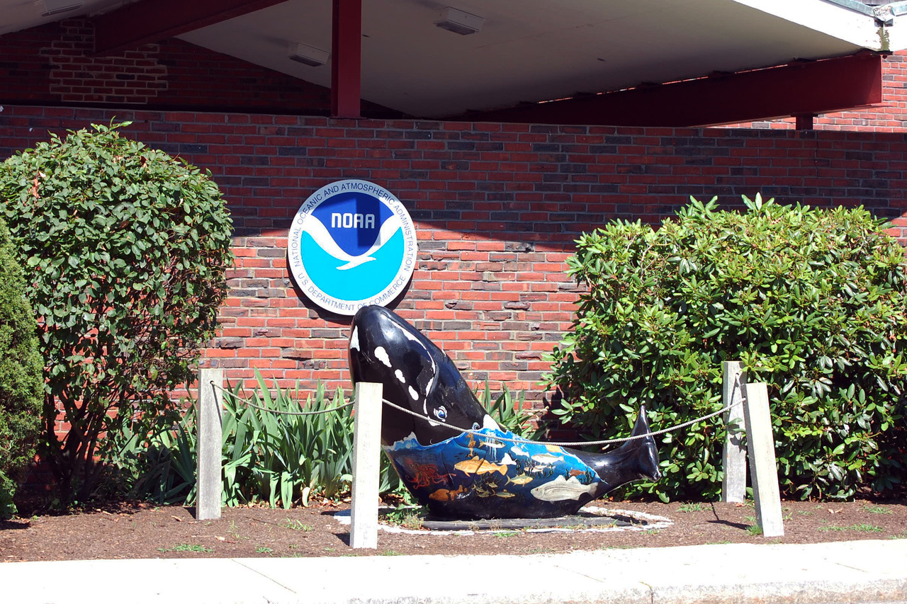 """Whale Trail"" whale statue in front of aquarium"