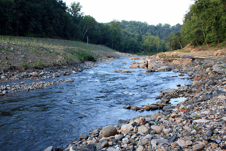 A river flows between a grassy bank on the left and a rocky bank on the right