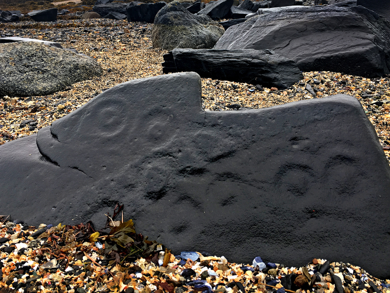 Petroglyphs on Petroglyph beach in Alaska.